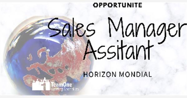 offre d u0026 39 emploi   assistant du directeur des ventes chez